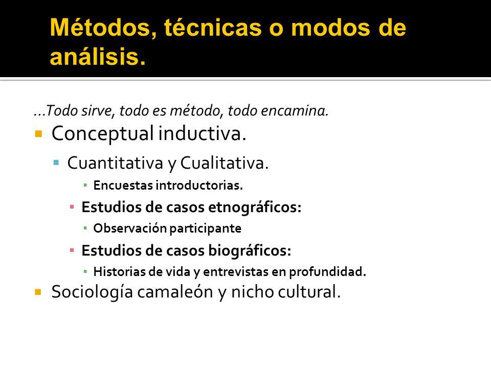 Métodos, técnicas o modos de análisis.