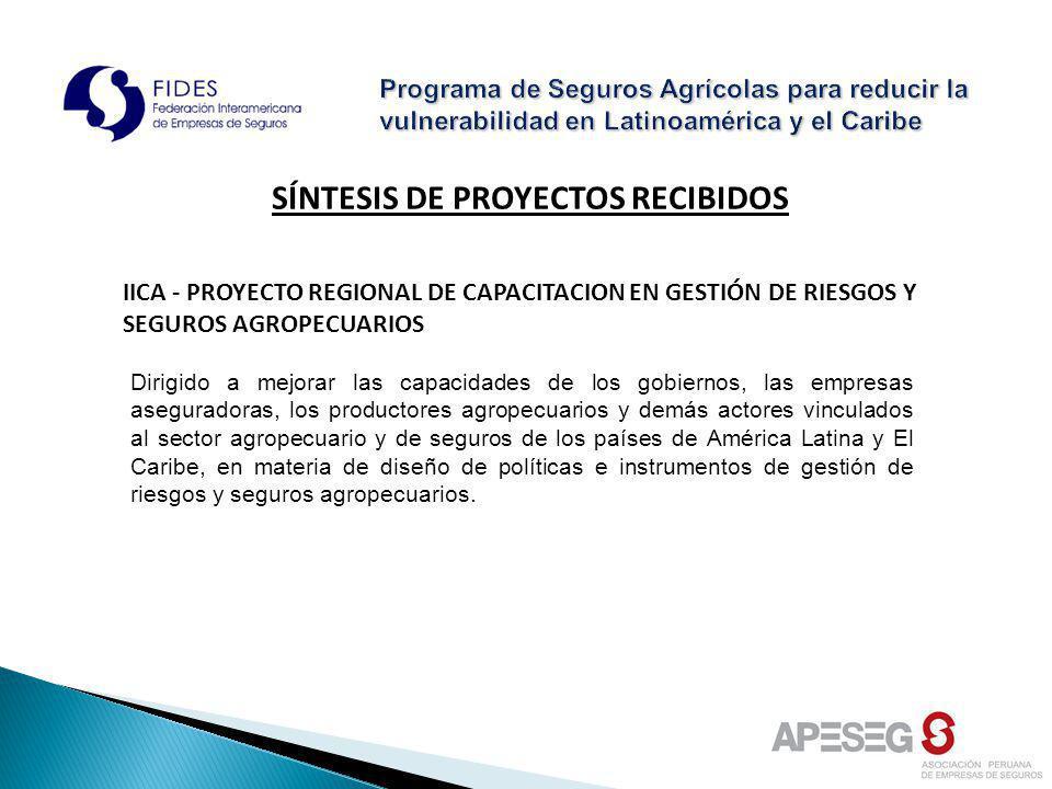 SÍNTESIS DE PROYECTOS RECIBIDOS