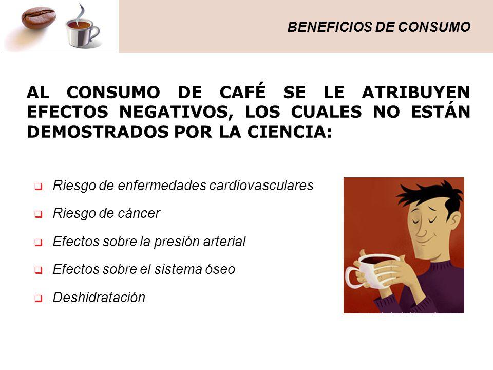 BENEFICIOS DE CONSUMO AL CONSUMO DE CAFÉ SE LE ATRIBUYEN EFECTOS NEGATIVOS, LOS CUALES NO ESTÁN DEMOSTRADOS POR LA CIENCIA: