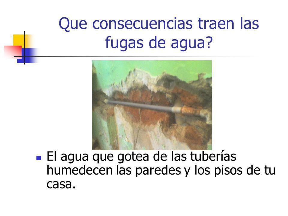 Que consecuencias traen las fugas de agua