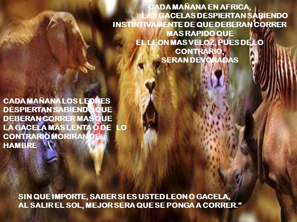 CADA MAÑANA EN AFRICA, LAS GACELAS DESPIERTAN SABIENDO INSTINTIVAMENTE DE QUE DEBERAN CORRER MAS RAPIDO QUE EL LEON MAS VELOZ, PUES DE LO CONTRARIO, SERAN DEVORADAS