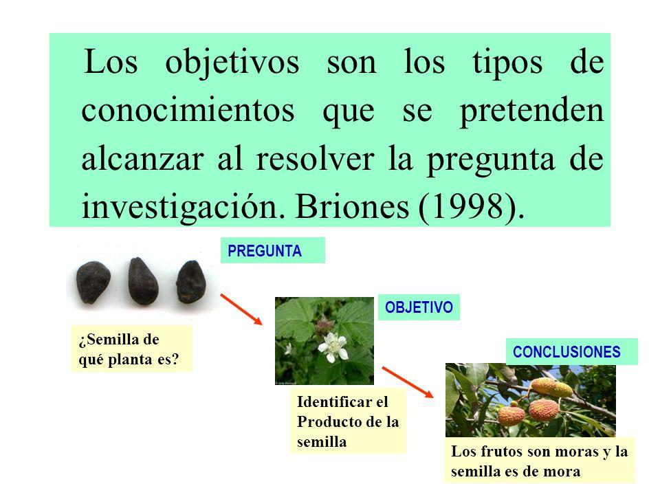 Los objetivos son los tipos de conocimientos que se pretenden alcanzar al resolver la pregunta de investigación. Briones (1998).
