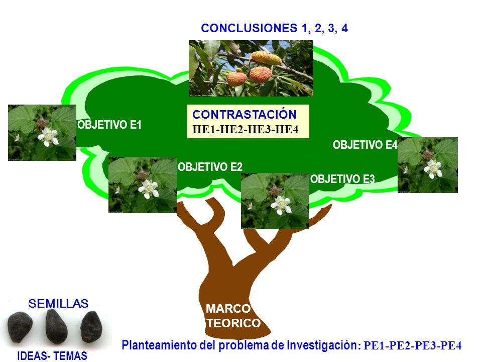 Planteamiento del problema de Investigación: PE1-PE2-PE3-PE4
