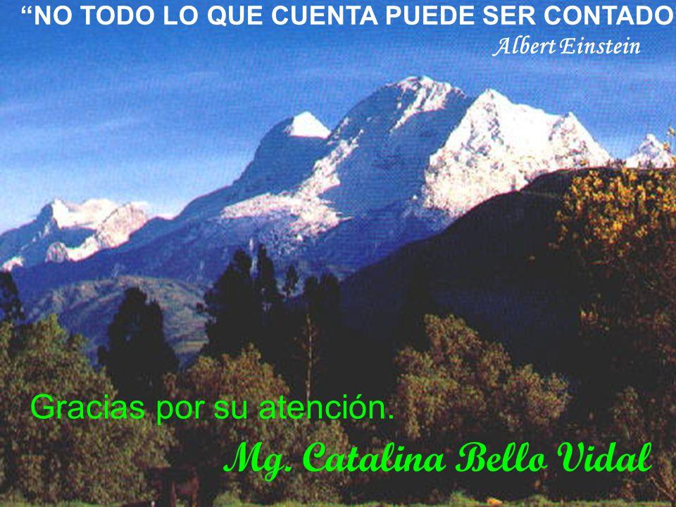 Mg. Catalina Bello Vidal