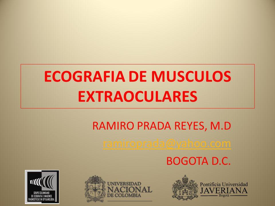 ECOGRAFIA DE MUSCULOS EXTRAOCULARES