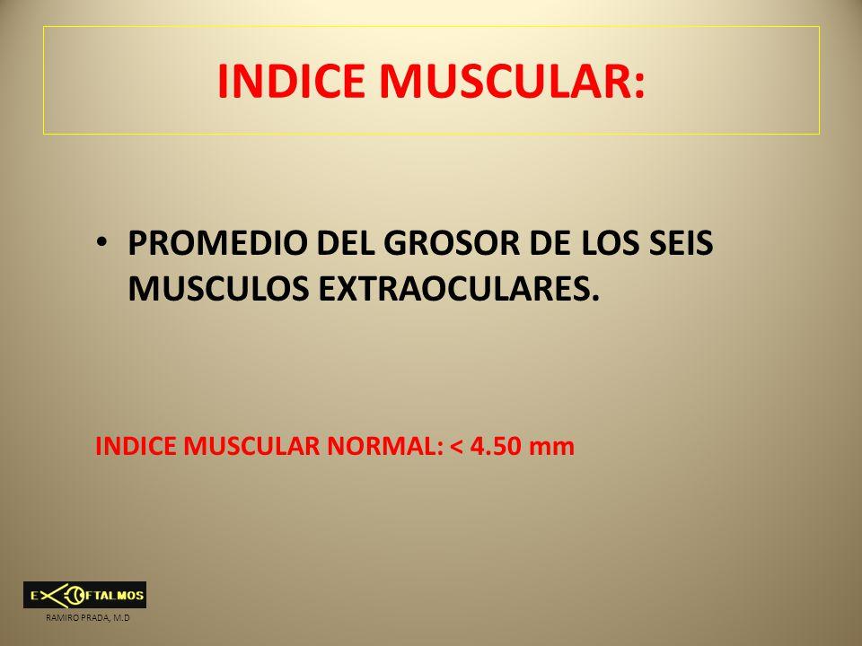 INDICE MUSCULAR: PROMEDIO DEL GROSOR DE LOS SEIS MUSCULOS EXTRAOCULARES. INDICE MUSCULAR NORMAL: < 4.50 mm.