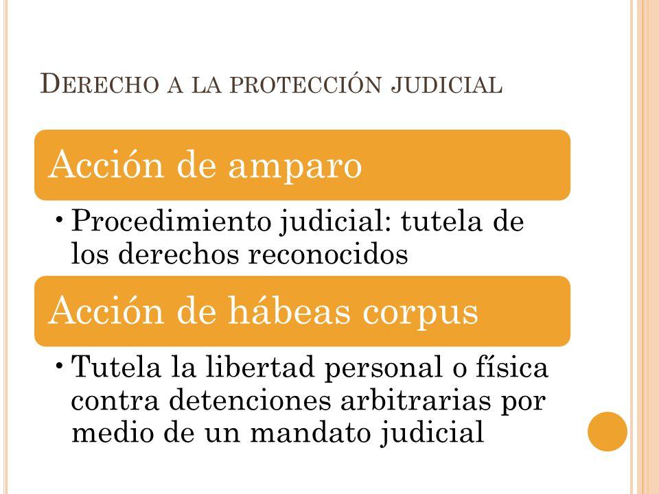 Derecho a la protección judicial