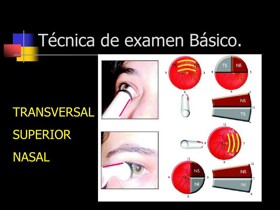 Técnica de examen Básico.
