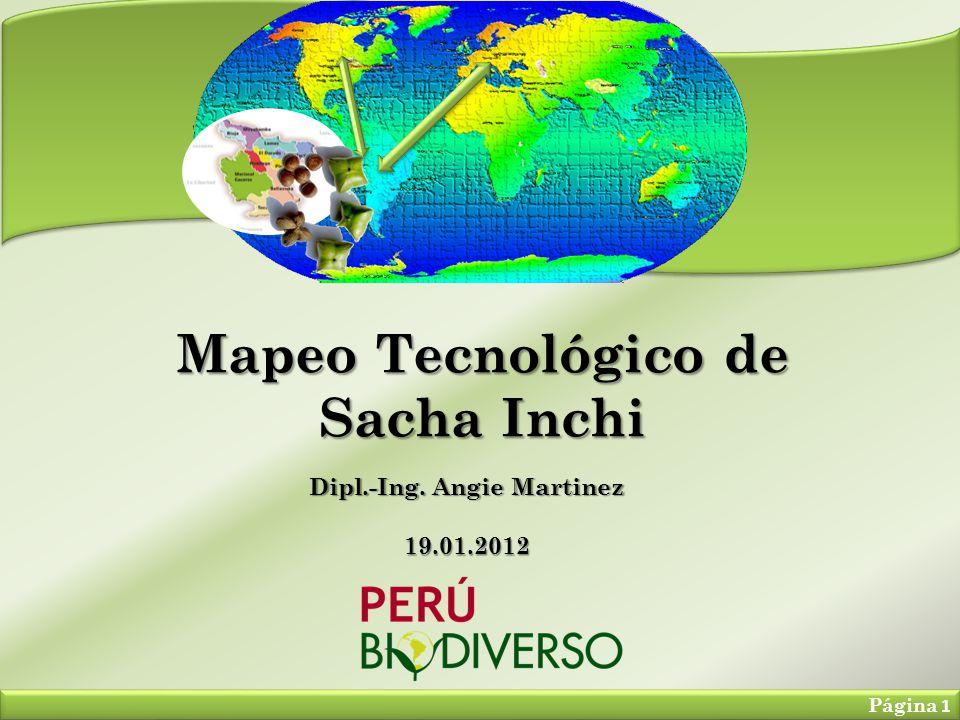 Mapeo Tecnológico de Sacha Inchi