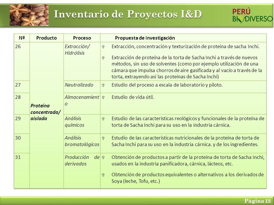 Inventario de Proyectos I&D