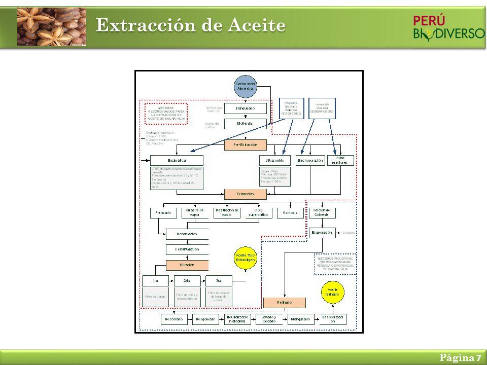 Extracción de Aceite Página 7