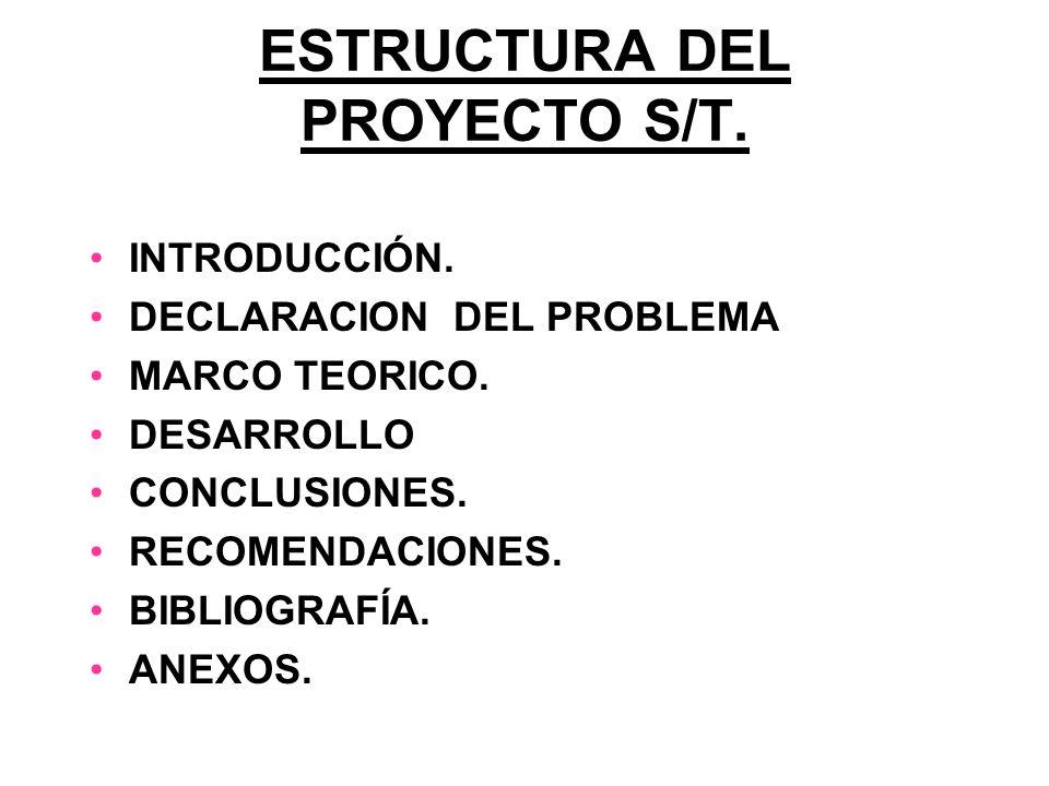 ESTRUCTURA DEL PROYECTO S/T.
