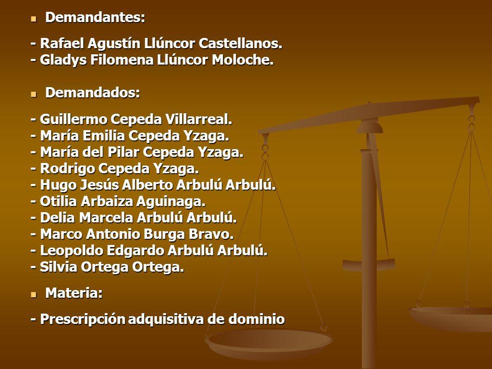 Demandantes: - Rafael Agustín Llúncor Castellanos. - Gladys Filomena Llúncor Moloche. Demandados: