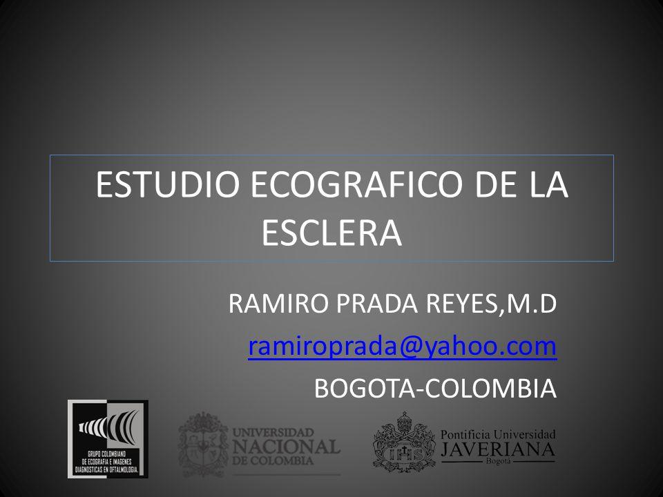 ESTUDIO ECOGRAFICO DE LA ESCLERA