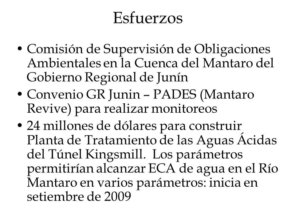 Esfuerzos Comisión de Supervisión de Obligaciones Ambientales en la Cuenca del Mantaro del Gobierno Regional de Junín.