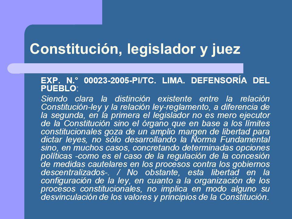 Constitución, legislador y juez