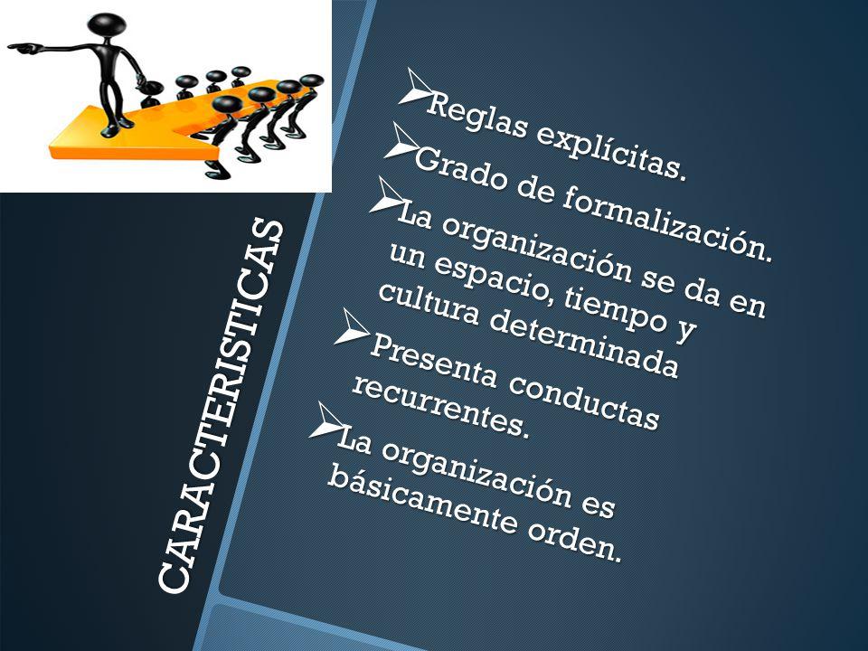 CARACTERISTICAS Reglas explícitas. Grado de formalización.