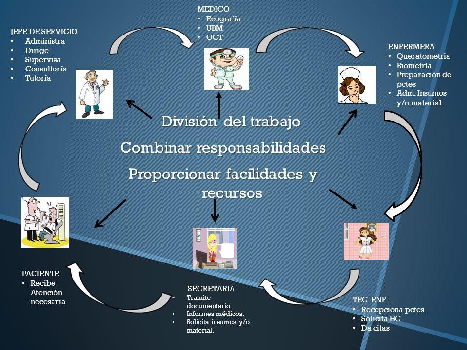 MEDICO Ecografía. UBM. OCT. JEFE DE SERVICIO. Administra. Dirige. Supervisa. Consultoría. Tutoría.
