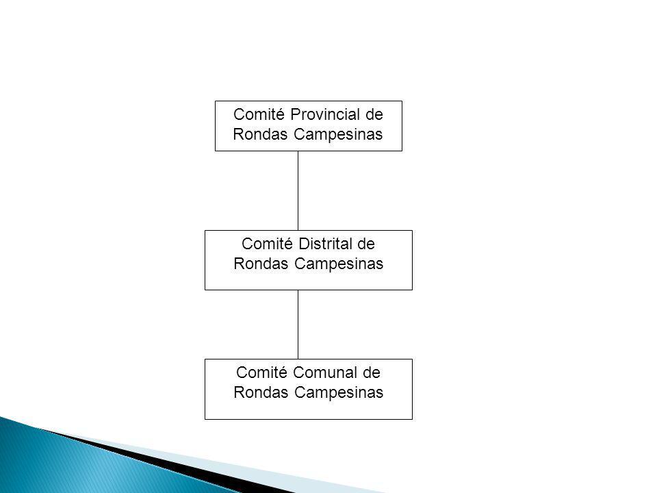 Comité Provincial de Rondas Campesinas