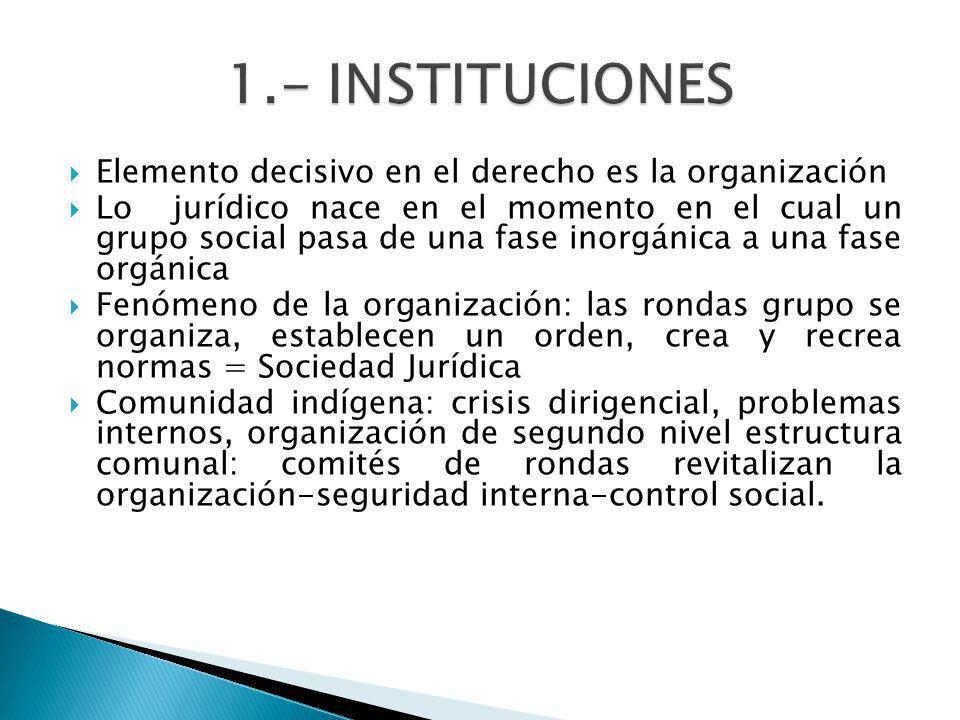 1.- INSTITUCIONES Elemento decisivo en el derecho es la organización