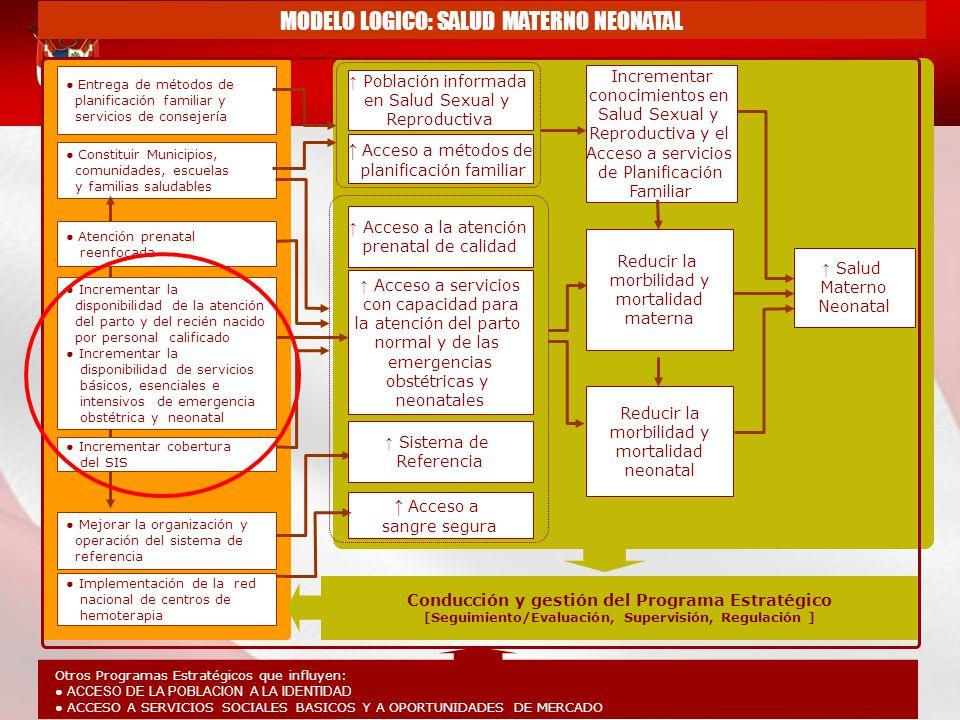 MODELO LOGICO: SALUD MATERNO NEONATAL