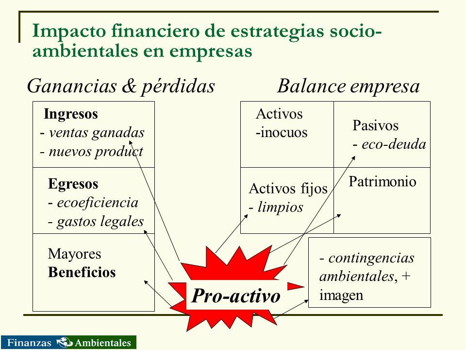 Impacto financiero de estrategias socio-ambientales en empresas