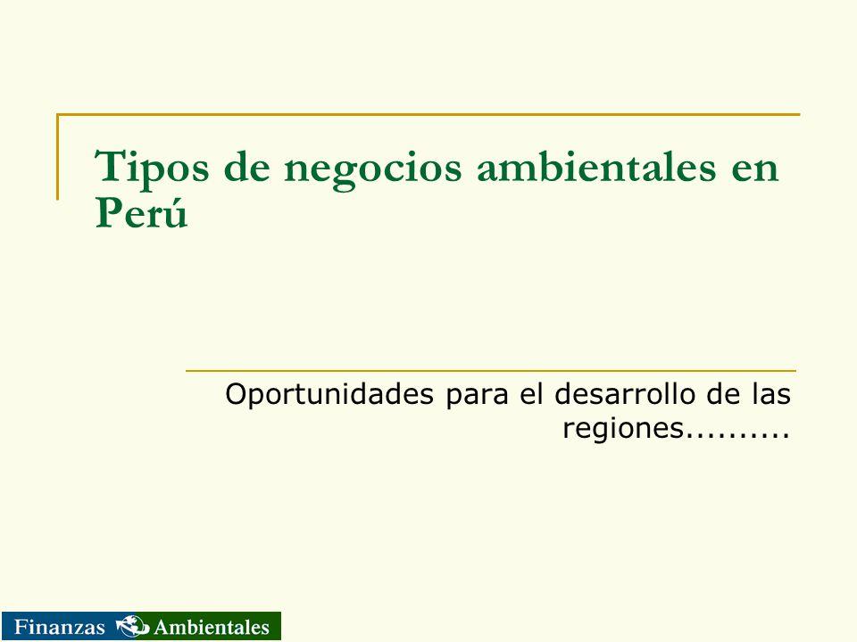 Tipos de negocios ambientales en Perú