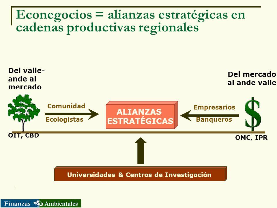 Econegocios = alianzas estratégicas en cadenas productivas regionales