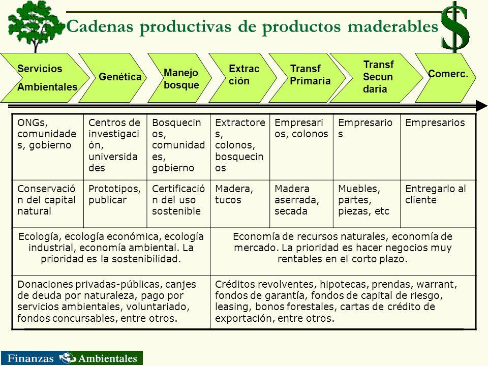 Cadenas productivas de productos maderables
