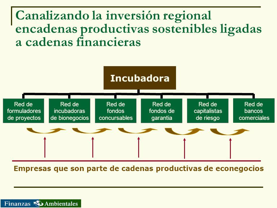 Canalizando la inversión regional encadenas productivas sostenibles ligadas a cadenas financieras