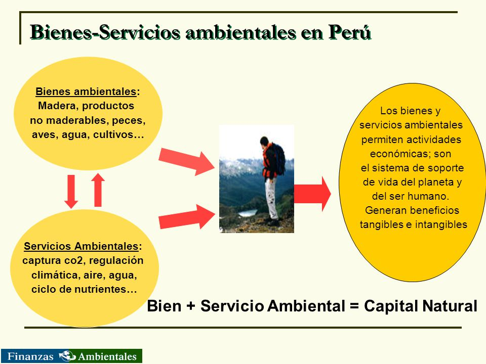 Bienes-Servicios ambientales en Perú