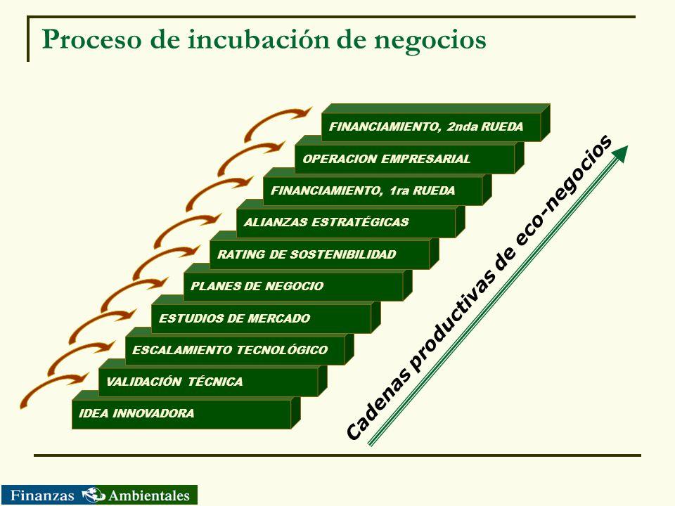 Proceso de incubación de negocios