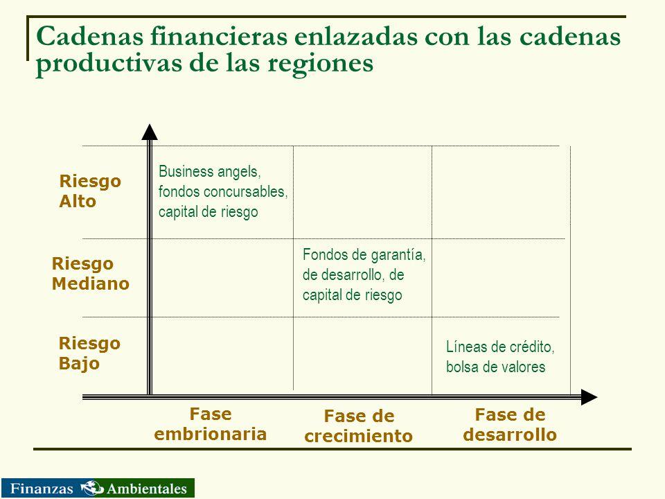 Cadenas financieras enlazadas con las cadenas productivas de las regiones