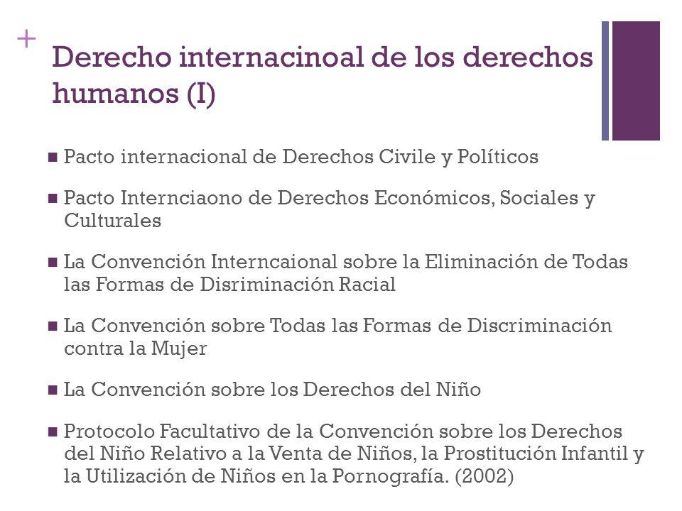 Derecho internacinoal de los derechos humanos (I)