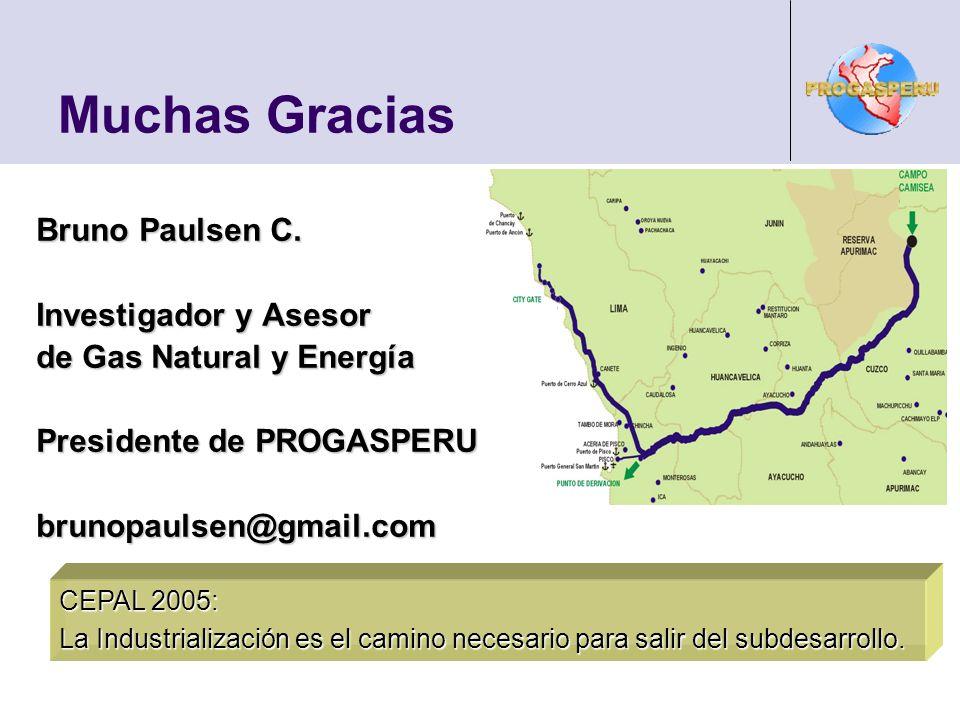 Muchas Gracias Bruno Paulsen C. Investigador y Asesor