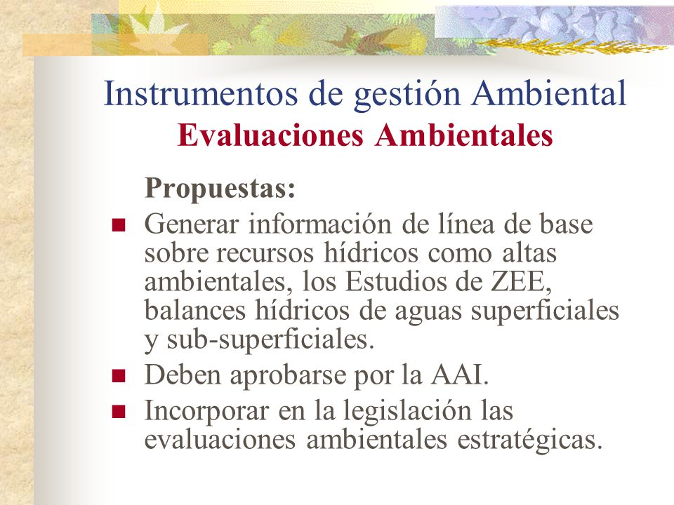 Instrumentos de gestión Ambiental Evaluaciones Ambientales