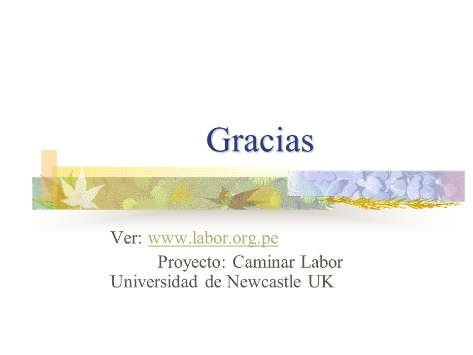 Gracias Ver: www.labor.org.pe
