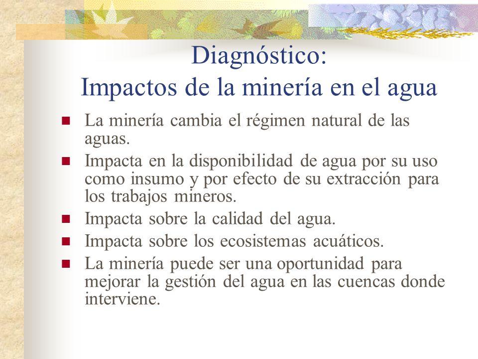Diagnóstico: Impactos de la minería en el agua