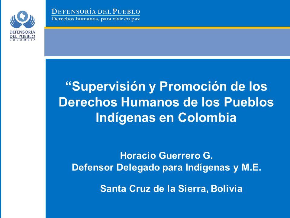 Supervisión y Promoción de los Derechos Humanos de los Pueblos Indígenas en Colombia
