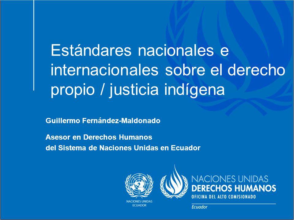 Estándares nacionales e internacionales sobre el derecho propio / justicia indígena
