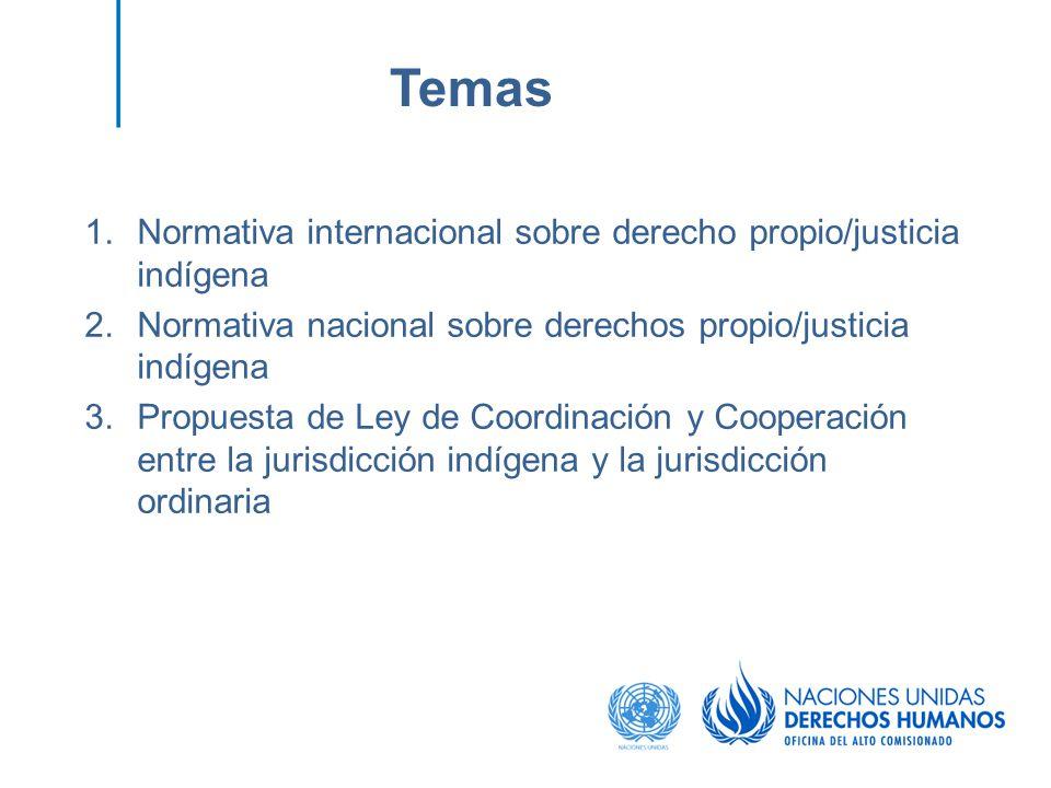 Temas Normativa internacional sobre derecho propio/justicia indígena