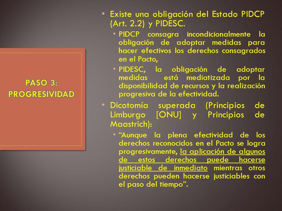 Existe una obligación del Estado PIDCP (Art. 2.2) y PIDESC.