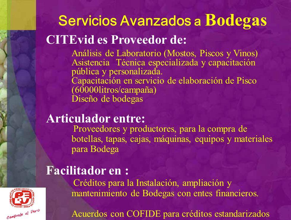 Servicios Avanzados a Bodegas