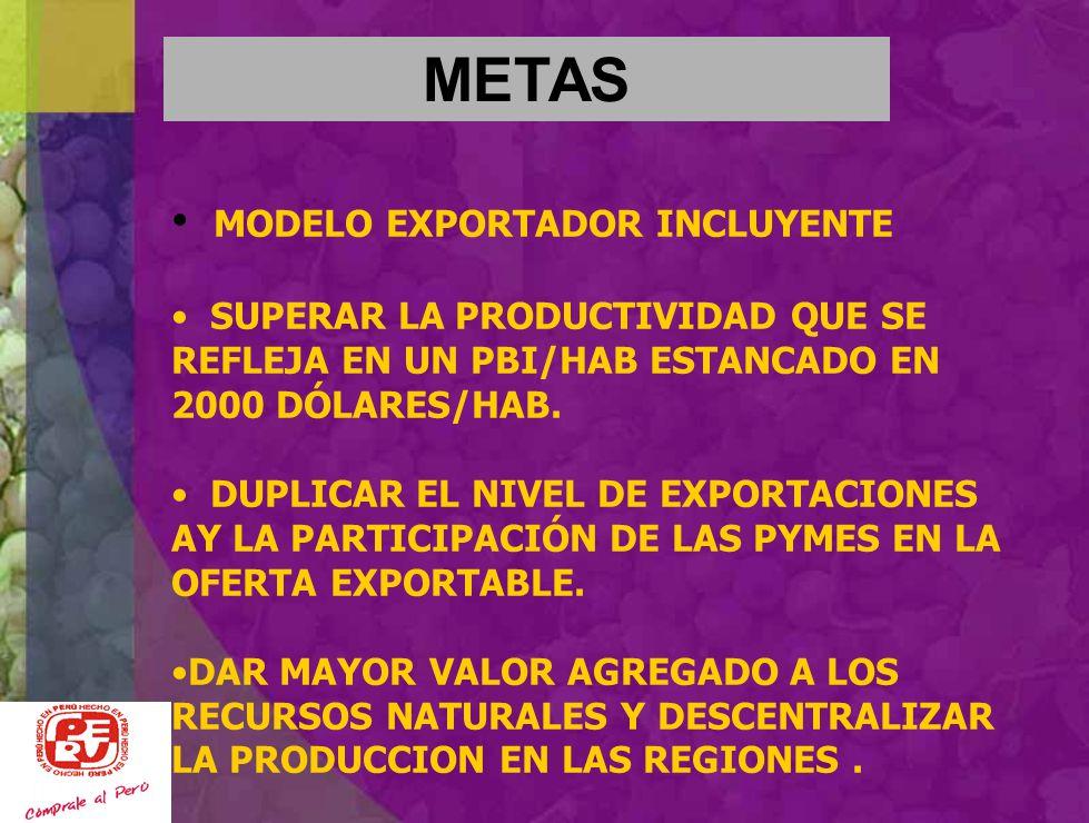 METAS MODELO EXPORTADOR INCLUYENTE