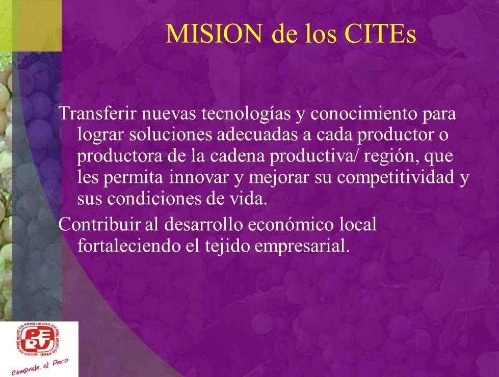 MISION de los CITEs