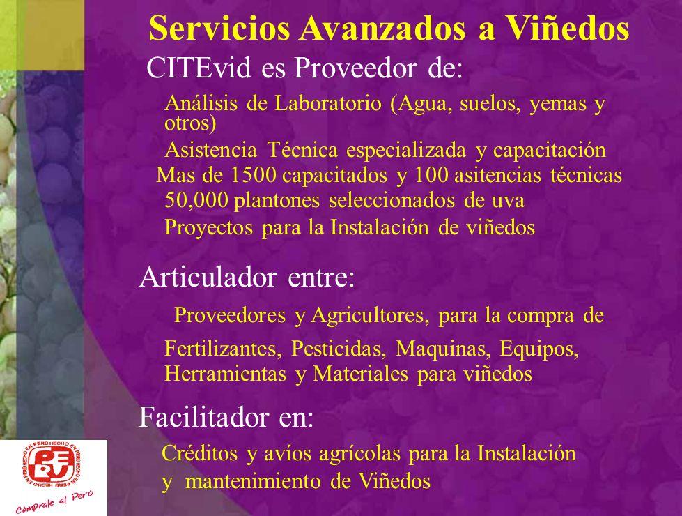 Servicios Avanzados a Viñedos