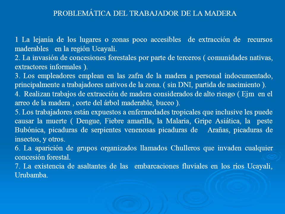 PROBLEMÁTICA DEL TRABAJADOR DE LA MADERA