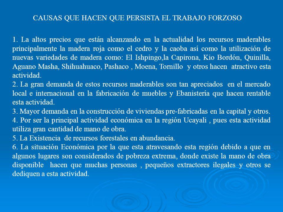 CAUSAS QUE HACEN QUE PERSISTA EL TRABAJO FORZOSO