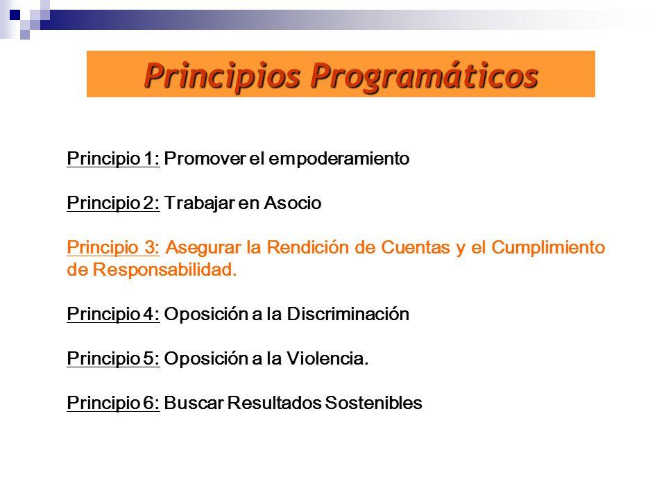 Principios Programáticos