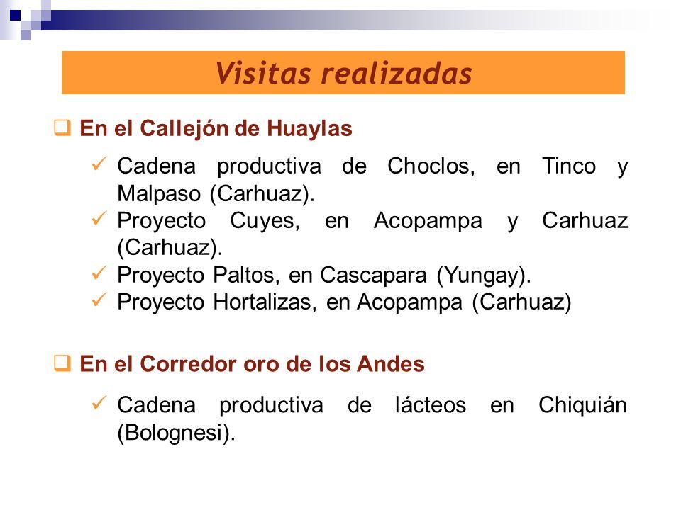 Visitas realizadas En el Callejón de Huaylas